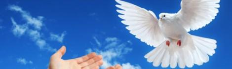 Vigília de Oração pela Paz