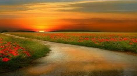 """""""Preparai o caminho do Senhor, endireitai as suas veredas"""""""